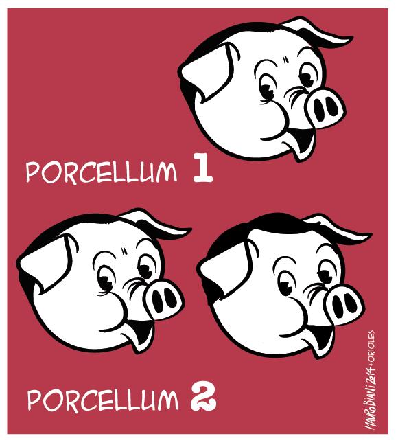 legge-elettorale-porcellum-1-e-21